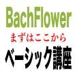 画像1: バッチフラワー ベーシック講座 10月07日・08日(月・火) (1)